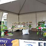 2. Ringelnatzlauf 2012_21