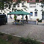 2. Ringelnatzlauf 2012_50
